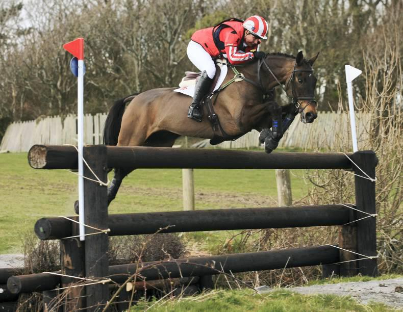 Dressage coaching pays off for Doherty