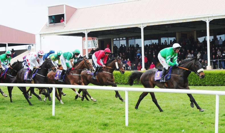 Wexford Racecourse all set for lean to the left