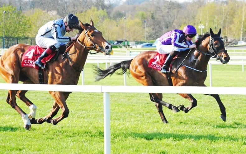 CORK MONDAY: O'Brien's horses coming into form