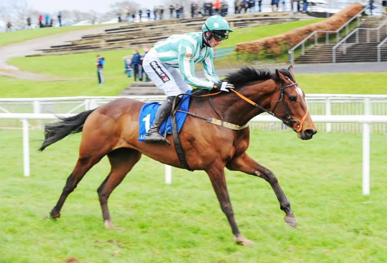 Punchestown Sale: Proven winners bound to attract strong interest