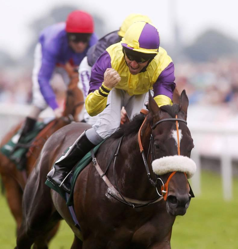 More success for Intense Focus colt Astaire