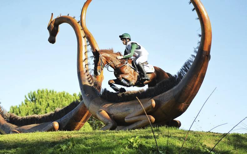 Training bursary laid invaluable foundation for young event horses