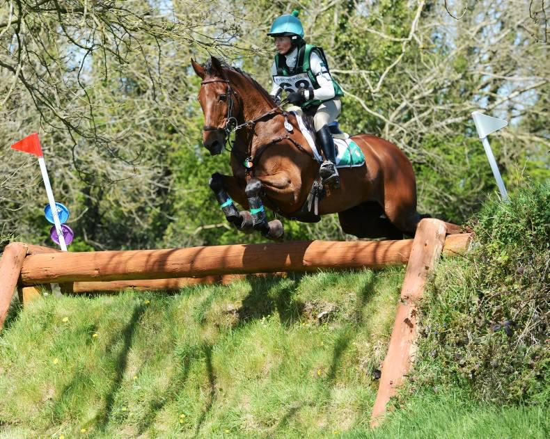 Brakes, Ballindenisk blinders and a new horse