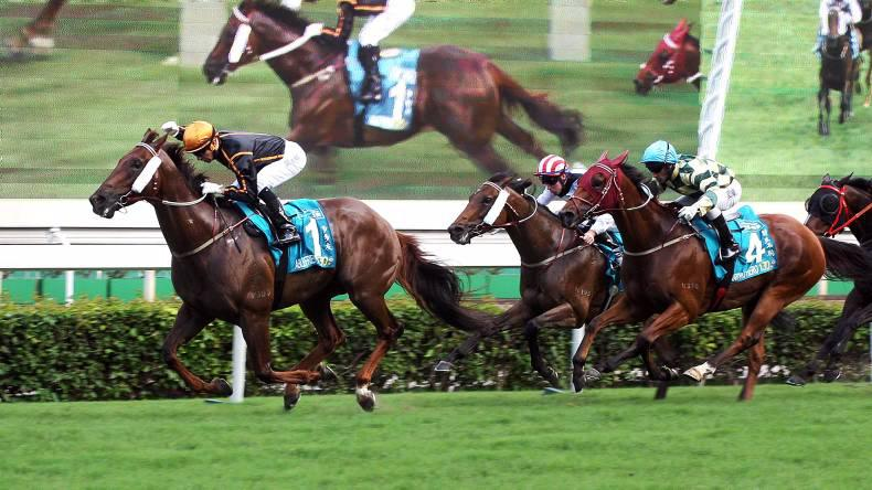 HONG KONG: Able Friend to showcase talent at Royal Ascot