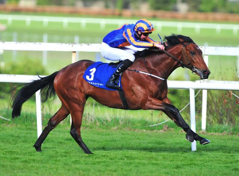 PEDIGREE NOTES: European stakes races 4th to 8th May