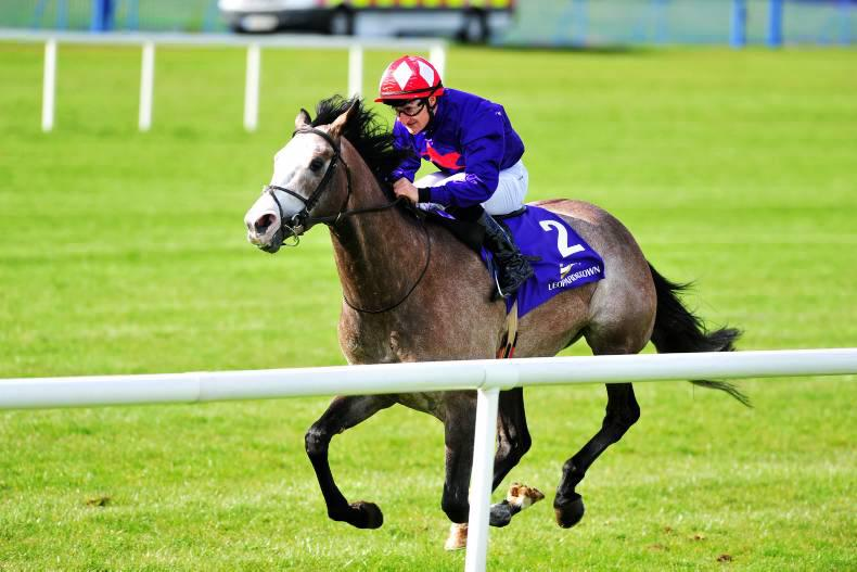 LEOPARDSTOWN SUNDAY: Ideal conditions for Success Days