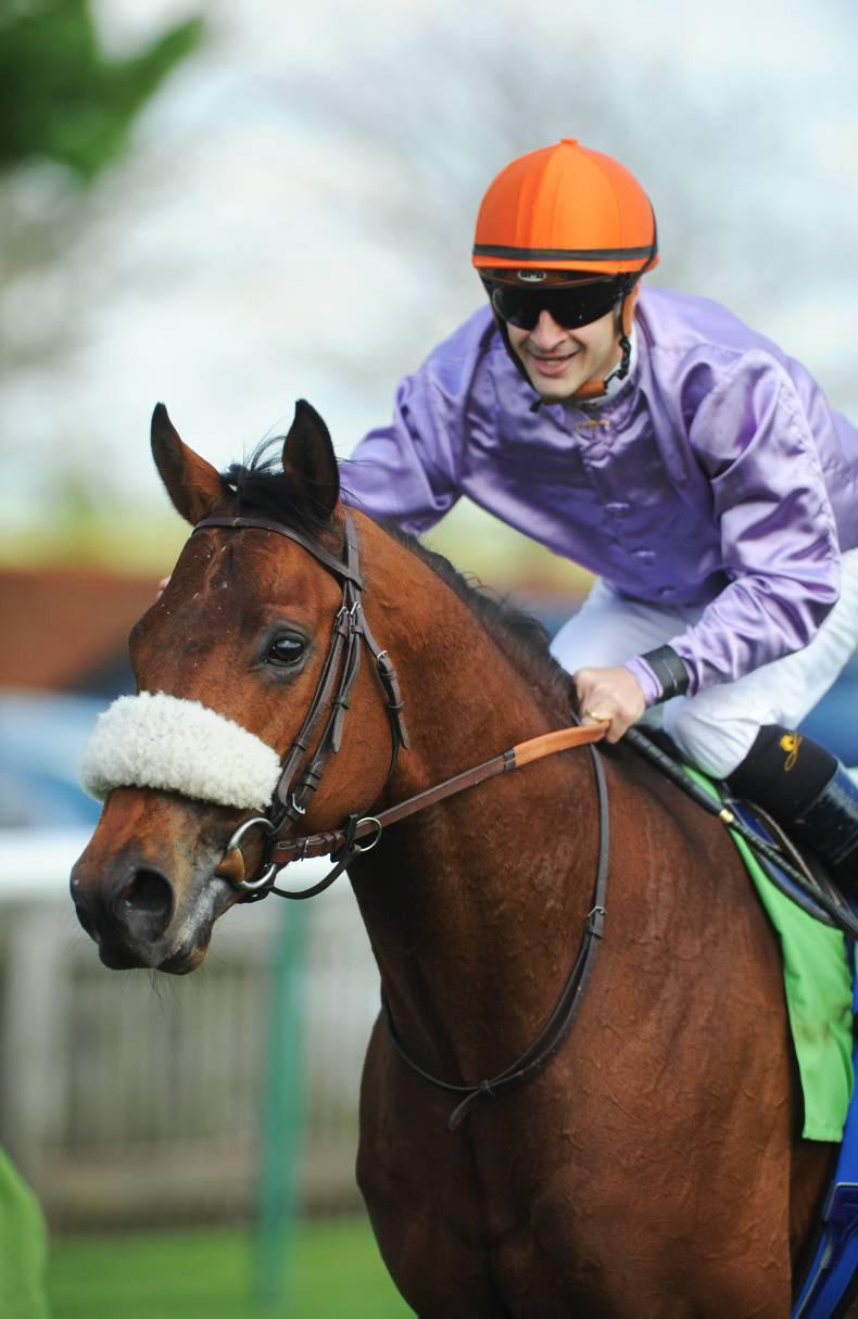 Make Believe a first-crop classic star for Makfi