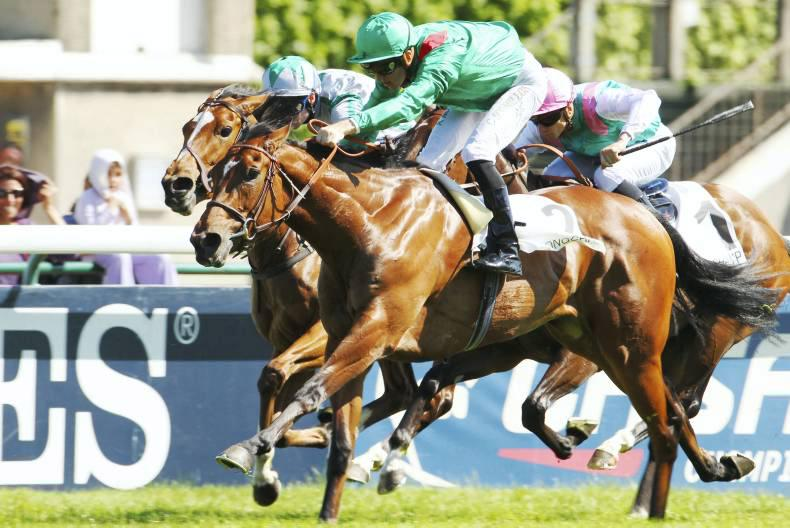 FRANCE: Ervedya quickens like a champion