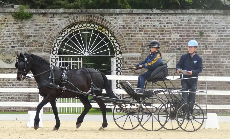 Abbottstown hosts carriage driving