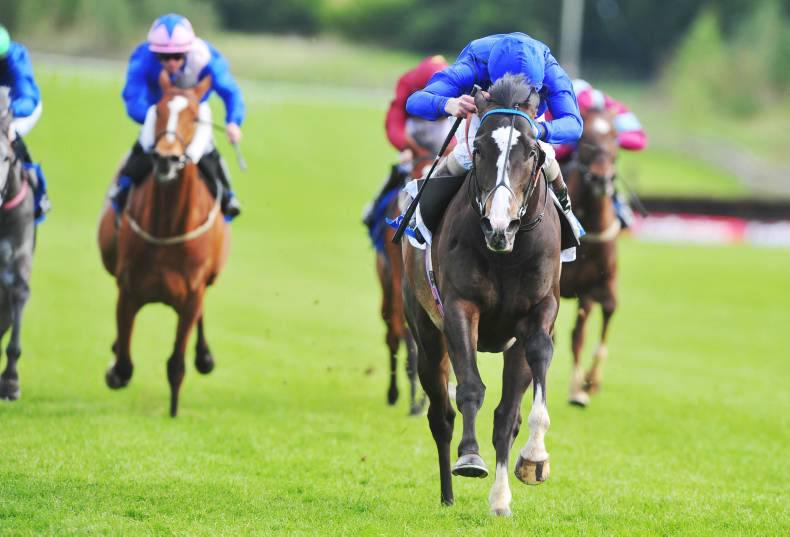 NAVAN SUNDAY PREVIEW: Answered up to the task in Vintage Crop
