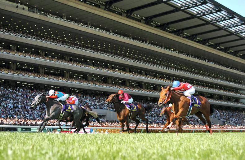 JAPAN: A crescendo as 50,000 roar the winner home