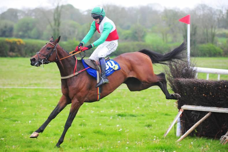 Proven talent oozing from Cheltenham catalogue