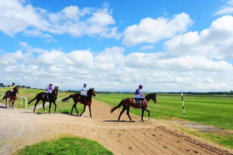 DONN McCLEAN: Breathing space for Tattersalls Gold Cup