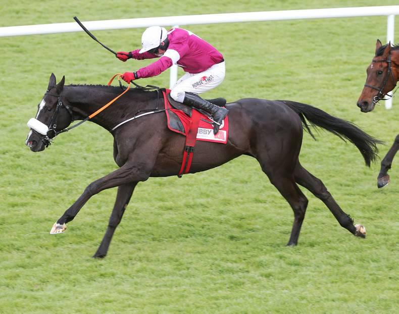 Don Cossack named champion jumps horse in Anglo-Irish Classifications