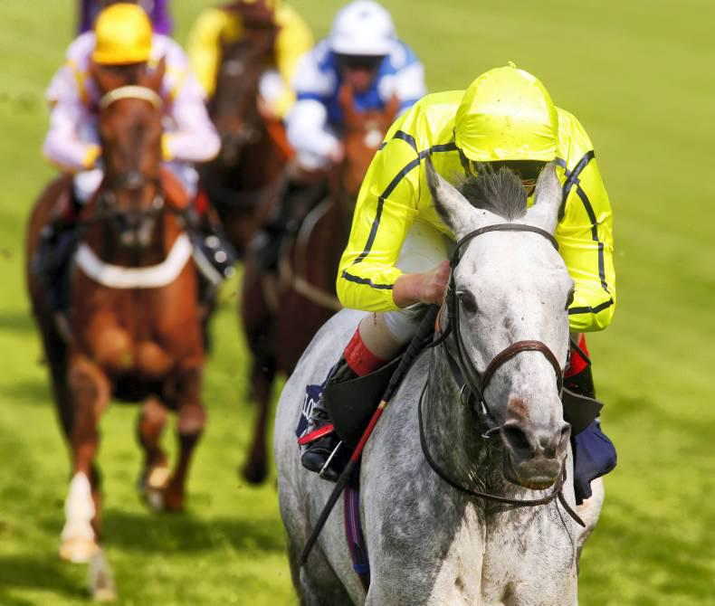 FRENCH PREVIEW: Solow too fast for Cirrus