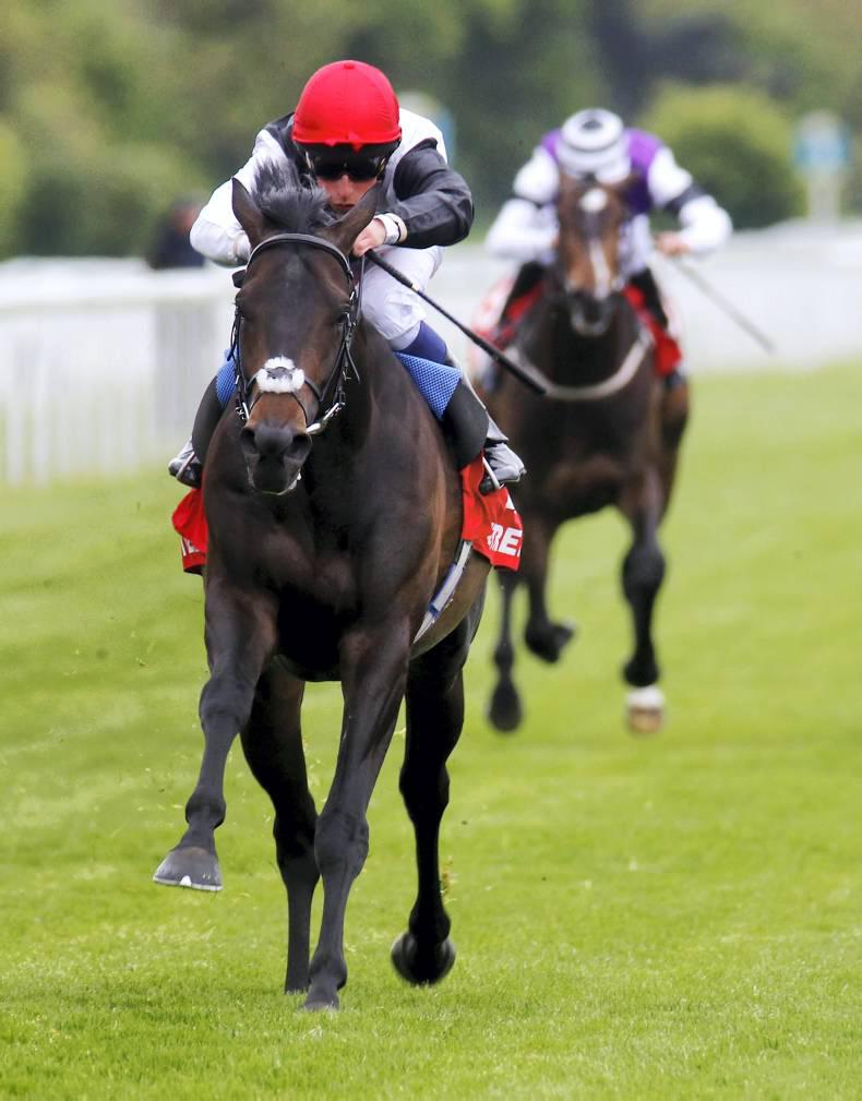 Golden Horn bred to stay Derby distance