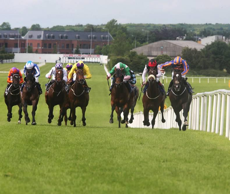 Boost for Royal Ascot Trials Day at Naas