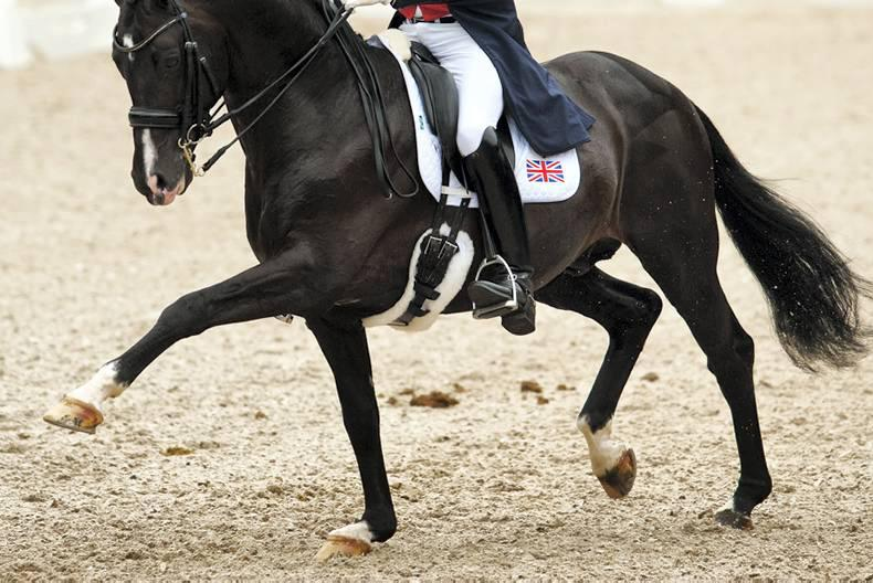 Tong the Master of Hickstead with GP win