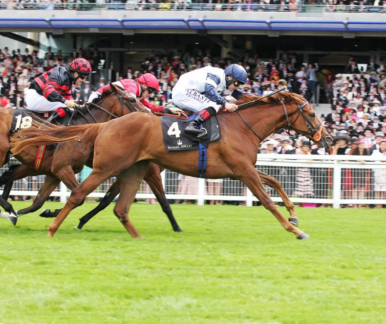 PEDIGREE NOTES: Pattern events from the bank holiday weekend