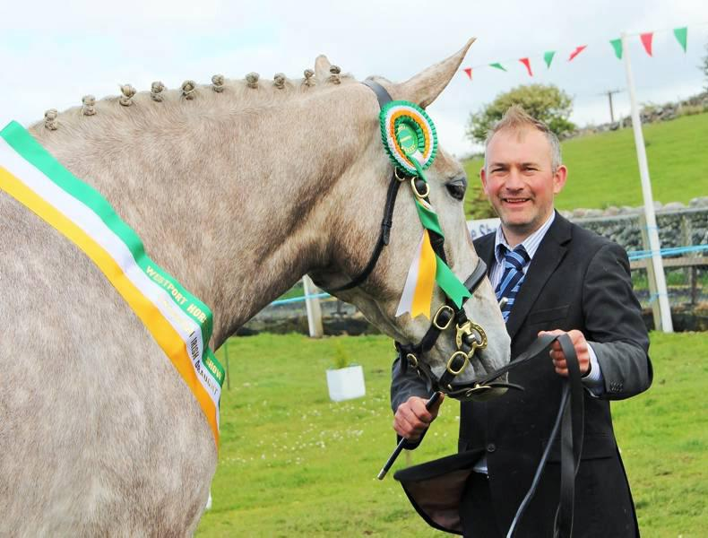 Murphy double at Westport Show