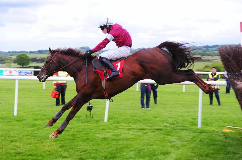 PUNCHESTOWN WEDNESDAY: A better result for Savello