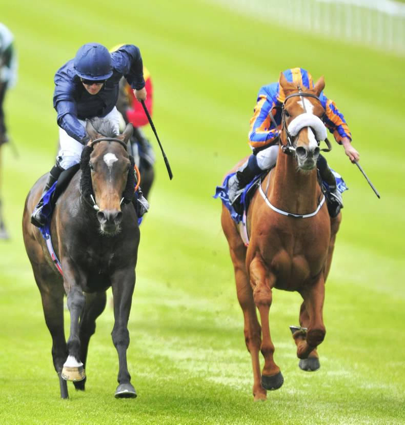 Giovanni can gallop to Derby glory