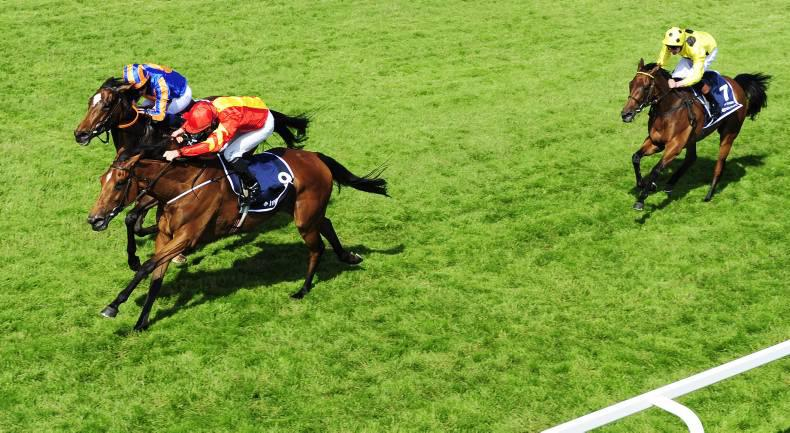 EPSOM FRIDAY: Qualify springs from the clouds