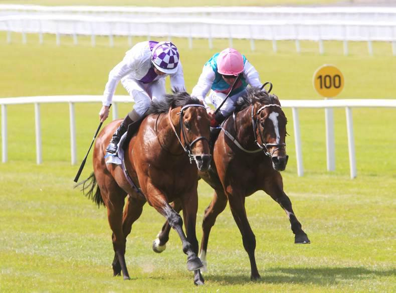 CURRAGH SUNDAY: Plan comes together for Lyons and Ainippe