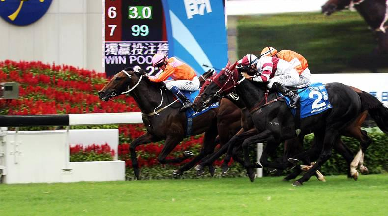 HONG KONG: Super Star thrills in Cup win