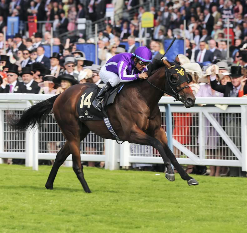 ROYAL ASCOT PREVIEW: Wesley Ward's squad