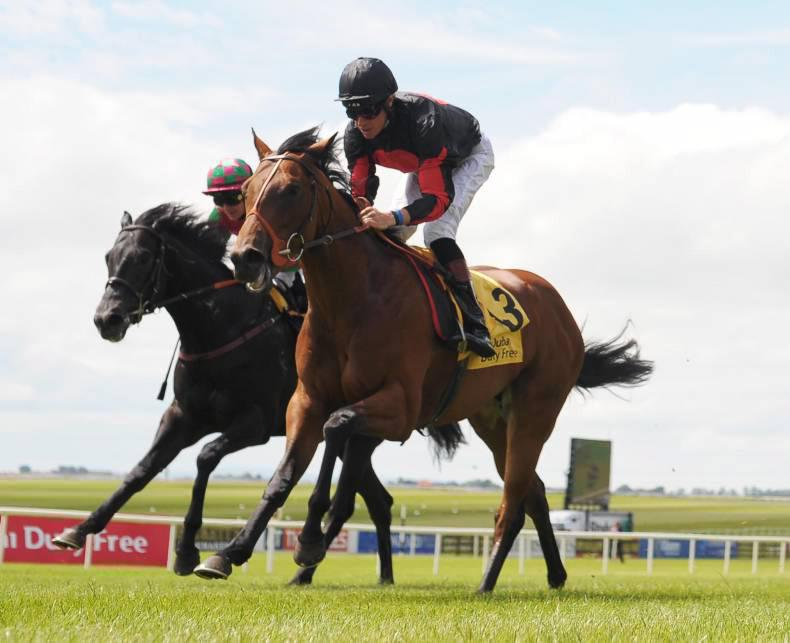 PEDIGREE ANALYSIS BRIEFS: Lilbourne Lad's star rises