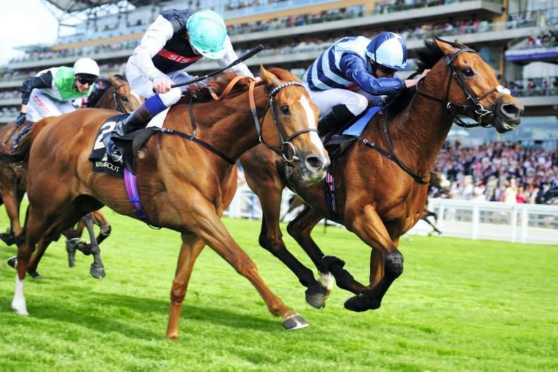 ROYAL ASCOT WEDNESDAY:  Dutch wins Hills duel