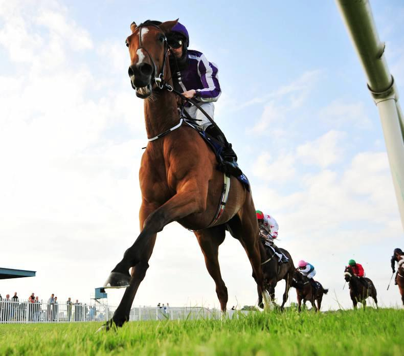 NAAS WEDNESDAY: O'Donoghue drives out Outstanding