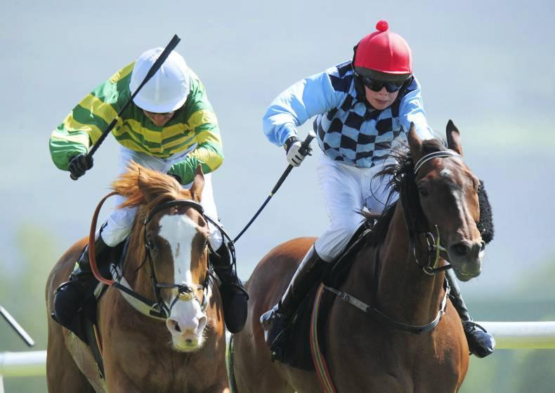 PONY RACING: Sheehys and King share the honours