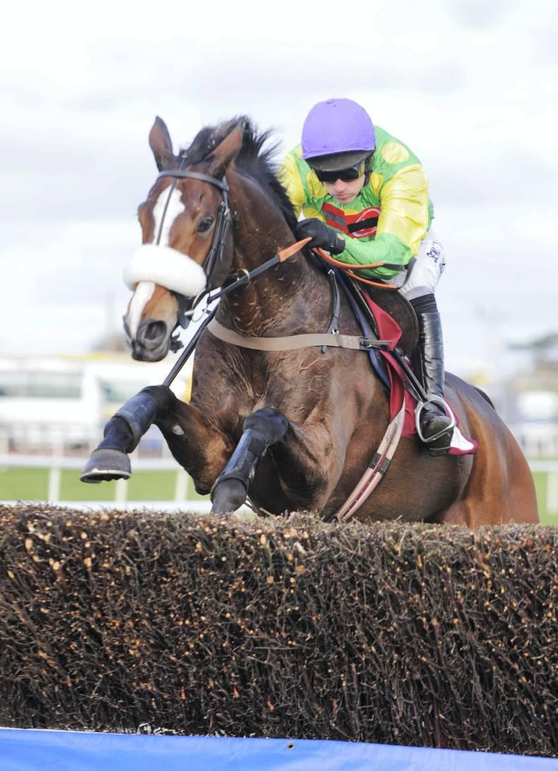 KAUTO STAR: Tributes to horse of a lifetime