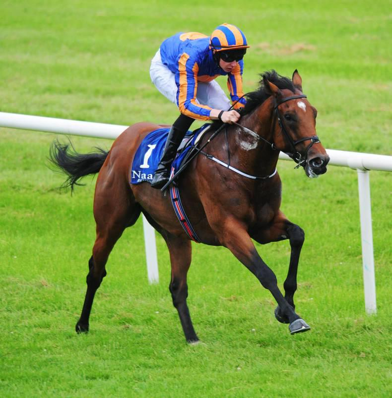 BRITISH PREVIEW: Cougar worth an Eclipse wager