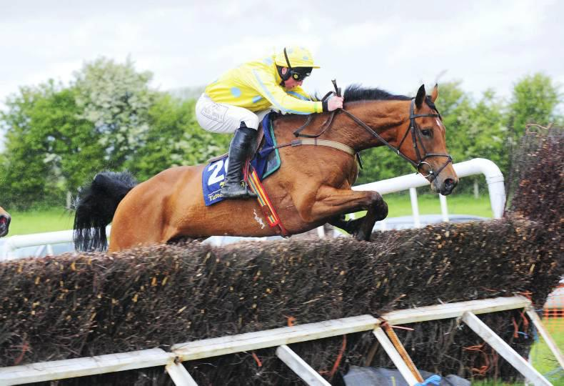 Wildcards added to Ascot Summer Sale
