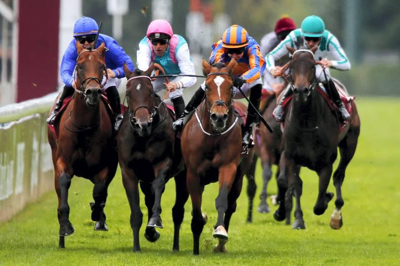 FRENCH PREVIEW:  Territories to claim Group 1 prize