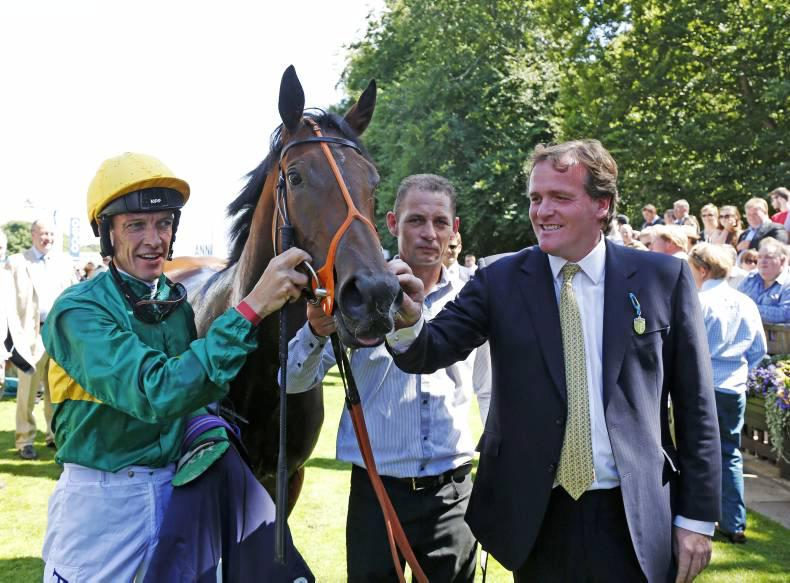 NEWMARKET FRIDAY: Illuminate a bright prospect