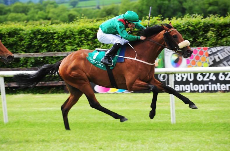 Navan winner sells for 95,000gns and heads hurdling