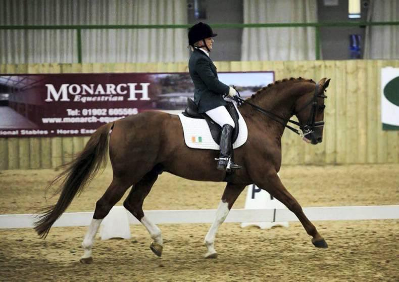 Irish dressage riders feature at Hartpury