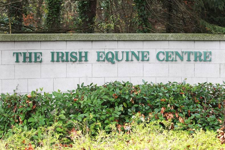 Strangles alert in north Leinster