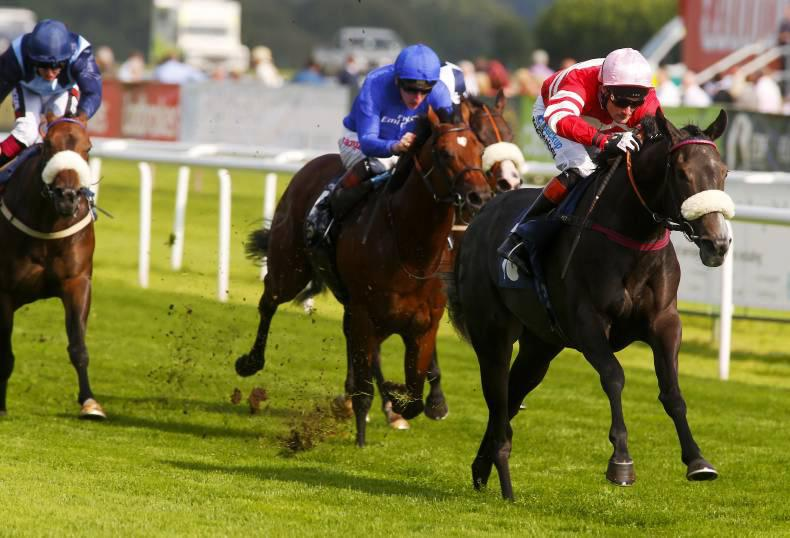 CURRAGH SATURDAY: Angel to find favour in Sapphire Stakes