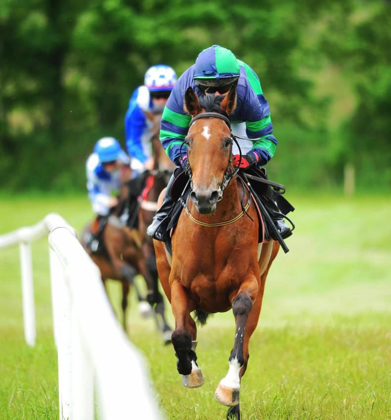 PONY RACING:  Treble day for O'Keeffe, Sheehy and Mulvihill