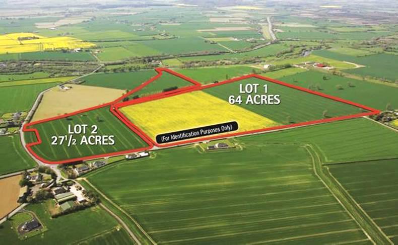 PRIVATE PROPERTY: Record price for land in Kildare