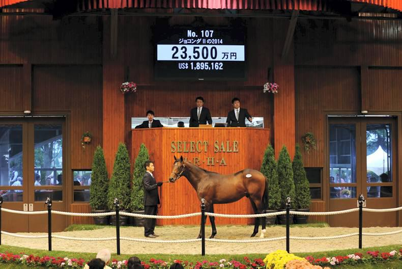 JAPAN: Results from the JRHA Select Sale
