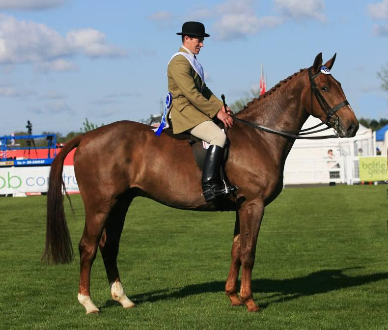 Ambitious targets set for Dublin's show hunters