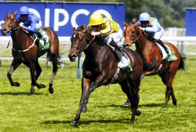 Besharah another bright prospect for Kodiac