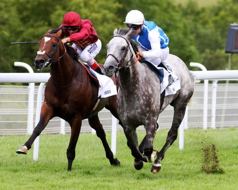 GOODWOOD WEDNESDAY: Solow simply the best