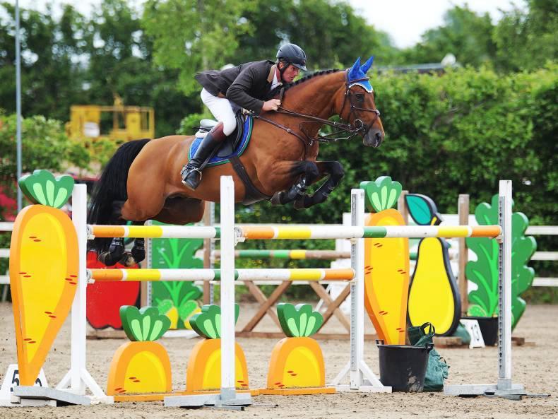 Doyle confirms the sale of stallion Samgemjee